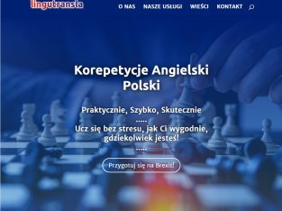 Korepetycje angielski, polski, tłumaczenia, CV