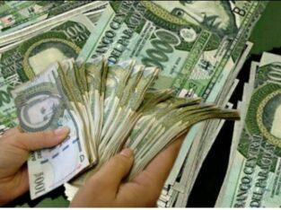 Program inwestycyjny finansowania projektu / cała